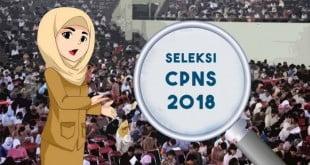 ilustrasi-seleksi-cpns-2018_20180716_025632